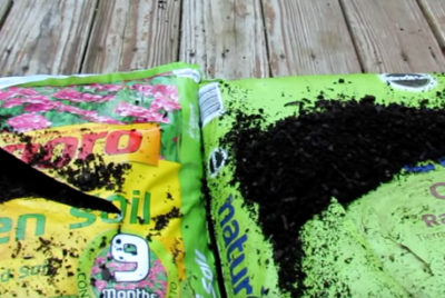 Best Organic Soils For Gardening