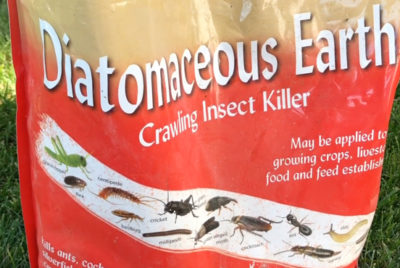 Diatomaceous Earth Natural Garden Pest Control